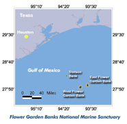 Graphic of Flower Garden Bank NMS location