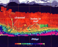 Graphic of SHOALS image