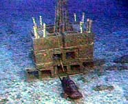 Image of an artificial reef