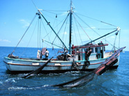 Photograph of a shrimp boat