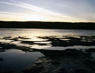 Image of mudflats