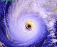 Image of hurricane derived from polar-orbiting sensor data