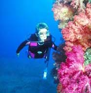 Image of diver near reef slope