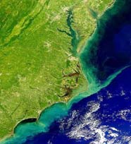 Remote sensing (SeaWiFS) image shows sediment stirred up along North Carolina by Hurricane Floyd
