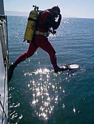 Image of diver entering water