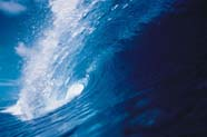 Image of ocean wave