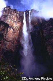 Image of Angel Falls, Venezuela